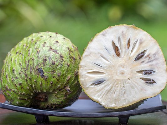 soursop fruit from aseptic fruit juice