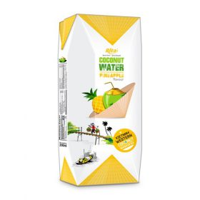 Aseptic 200ml Coconut With Pineapple